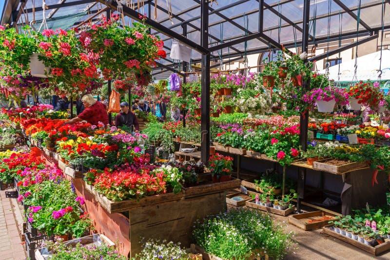 Mercato di strada del fiore in Lettonia, Riga, il 5 giugno 2017 fotografia stock libera da diritti
