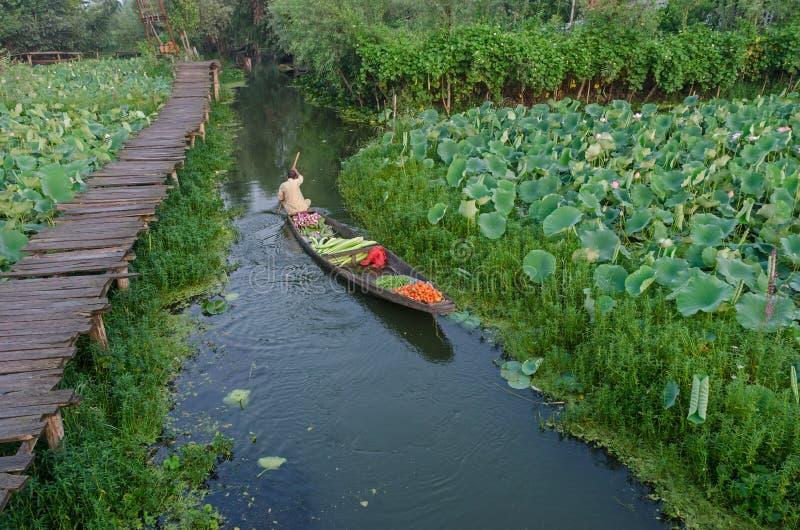 Mercato di verdure di mattina sul lago dal fotografia stock libera da diritti