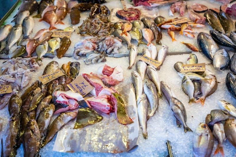 Mercato ittico tradizionale alla città Kerkyra di Corfù in Grecia, genere differente di pesci da vendere fotografia stock libera da diritti