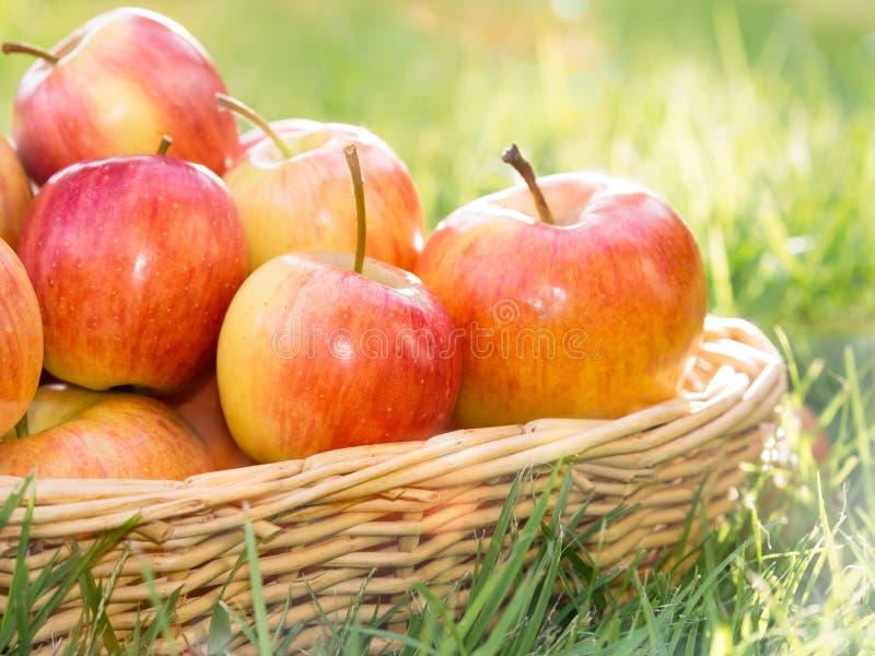 Merce nel carrello matura rossa della mela sull'iarda immagini stock