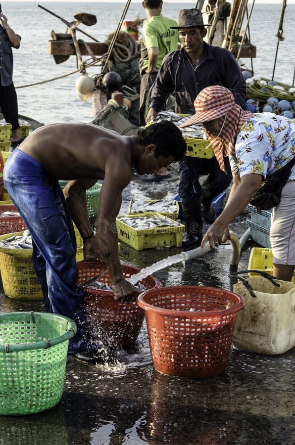 Merce nel carrello non identificata del pesce di lavaggio del lavoratore fotografia stock