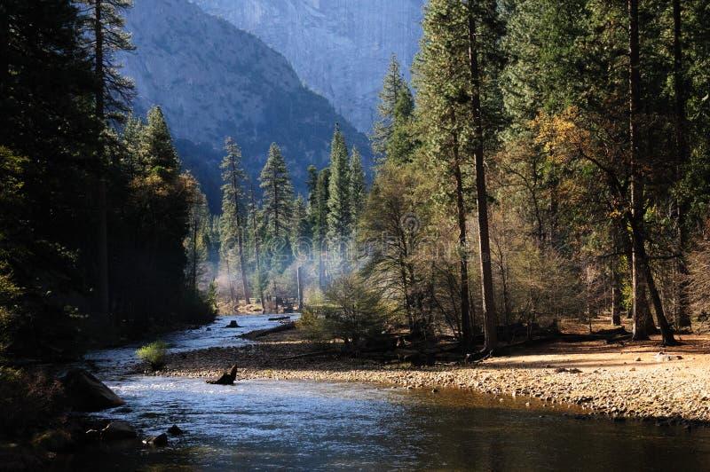 Merced flod i den Yosemite dalen royaltyfri fotografi