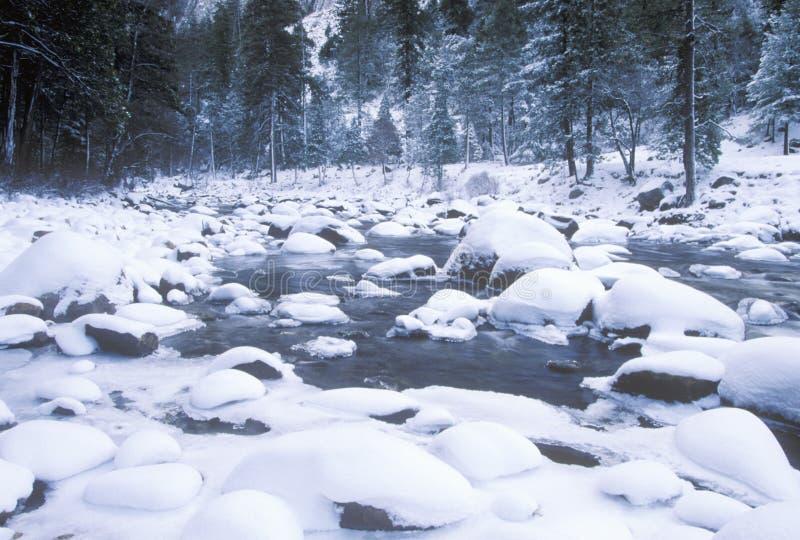 Merced River in Winter stock photo