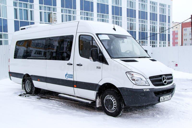 Mercedes-Benz Sprinter στοκ εικόνα με δικαίωμα ελεύθερης χρήσης