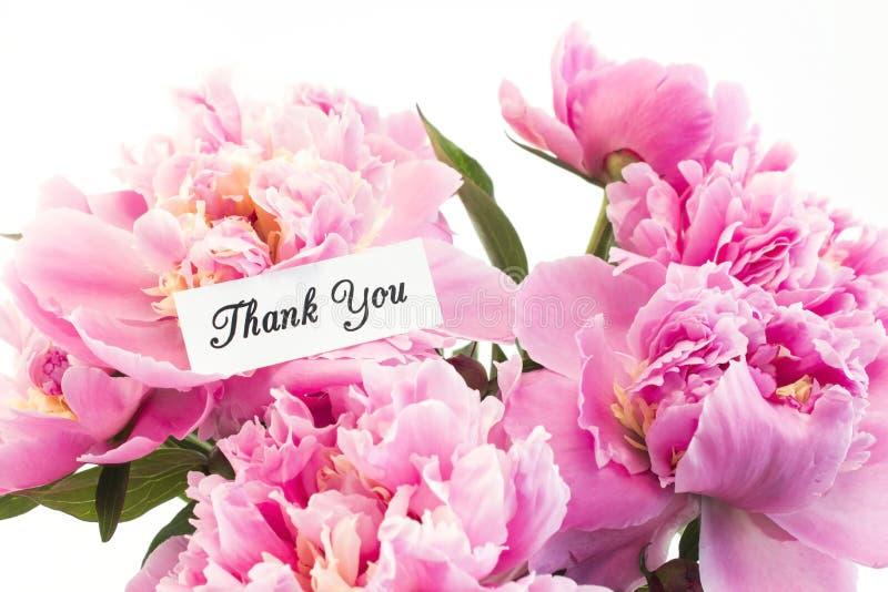 Merci carder avec le bouquet des pivoines roses photographie stock