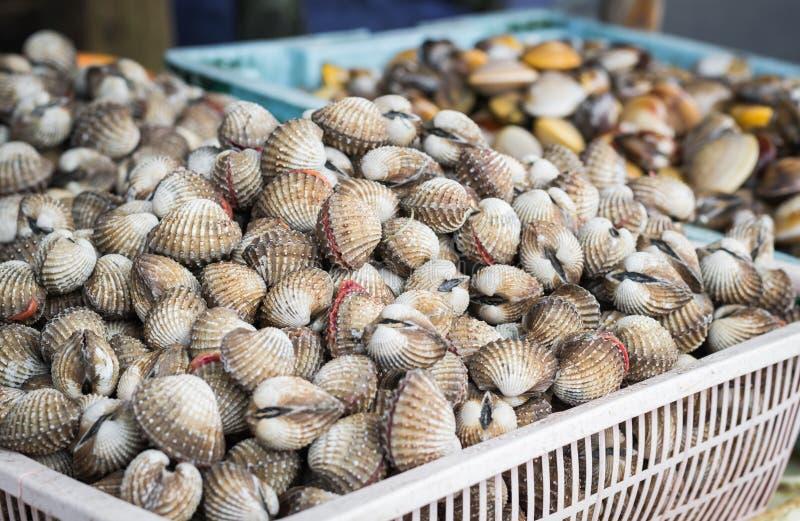 Merci nel carrello del mussle delle coperture e del mare di arca fotografia stock