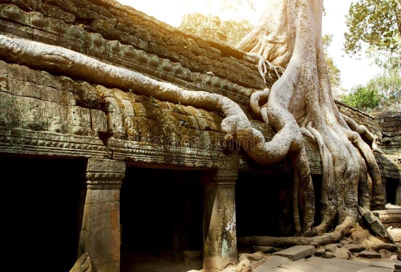 Merci temple de Phrom image libre de droits