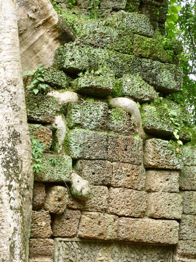 Merci temple de Prohm chez Angkor au Cambodge Dans le bruit parlez, le site des films de Tomb Raider images libres de droits