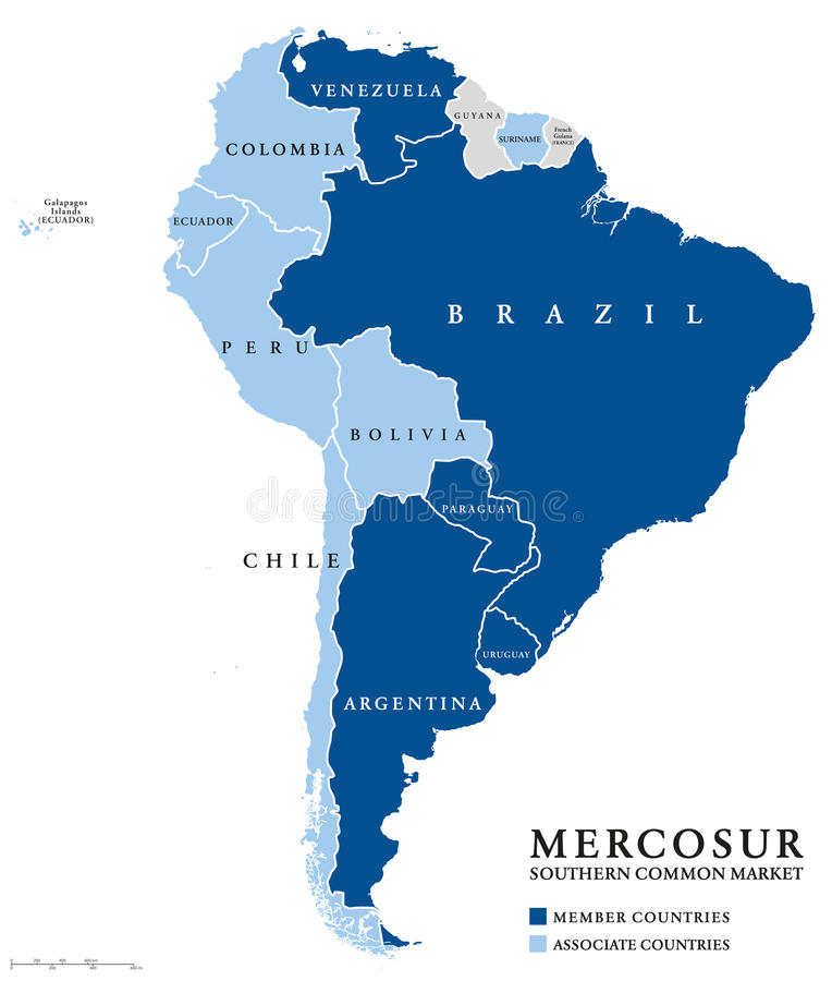 MERCOSUR南方共同市场国家信息地图 向量例证