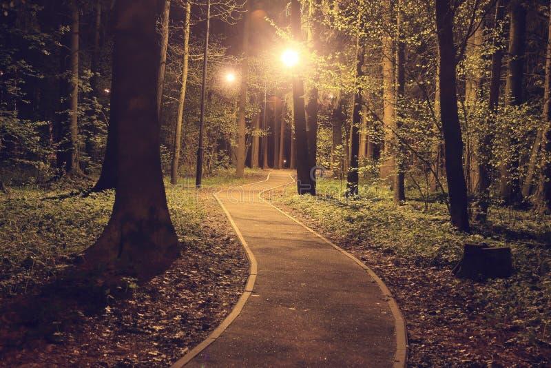Merdanie ścieżka w noc parku iluminującym lampionami zdjęcie royalty free