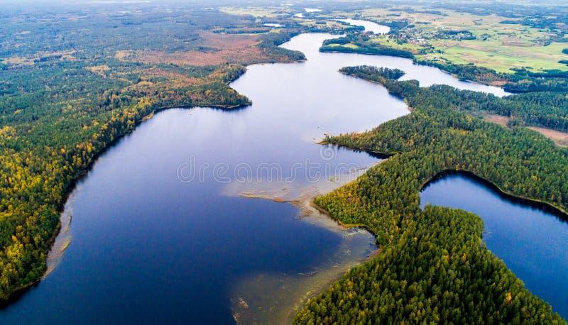 Meren in bos, luchtfotografie stock foto's