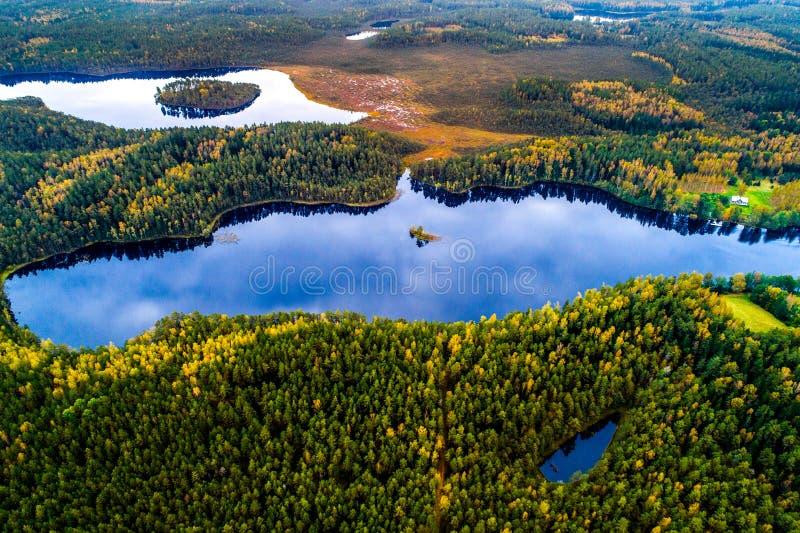 Meren in bos, luchtfotografie royalty-vrije stock foto's