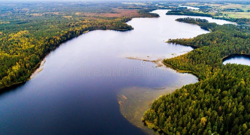 Meren in bos, luchtfotografie stock fotografie