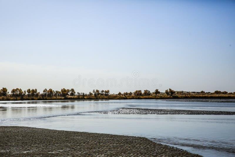 Meren in de woestijn stock afbeeldingen
