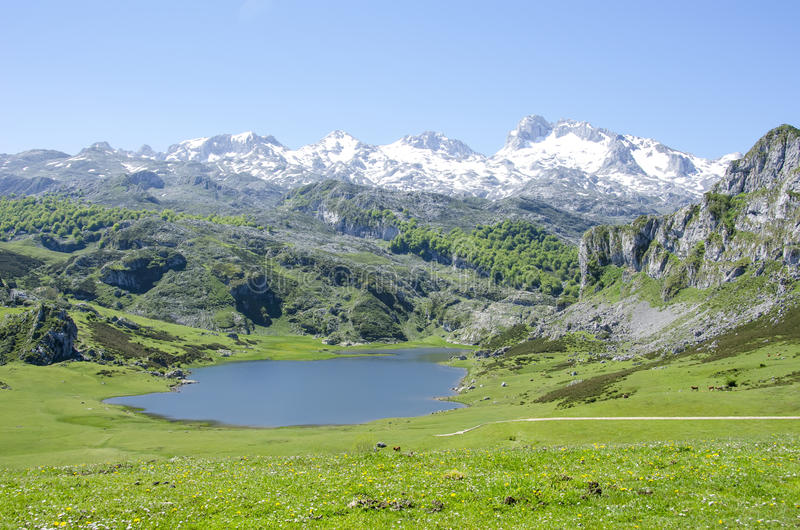 Meren van Covadonga royalty-vrije stock afbeelding