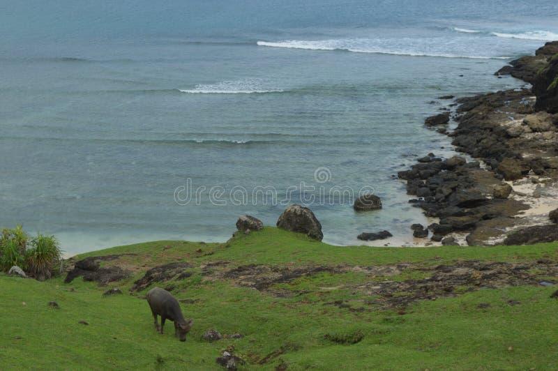 Merese小山,龙目岛,印度尼西亚 免版税库存照片