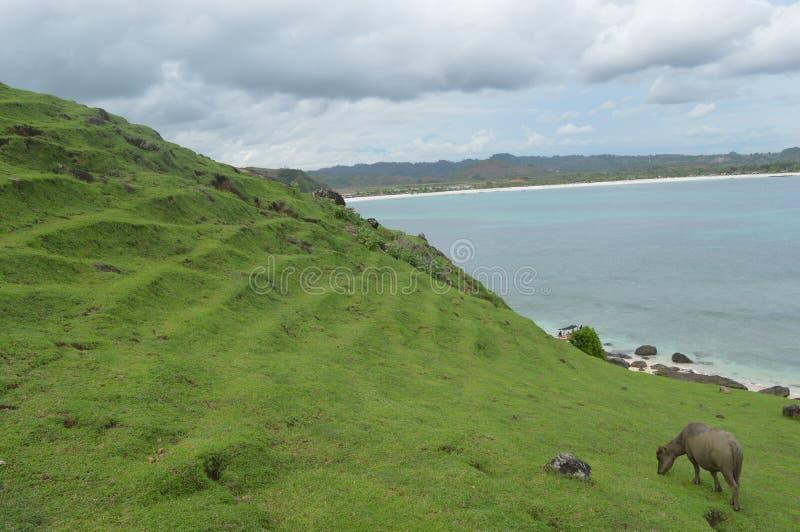 Merese小山,龙目岛,印度尼西亚 库存照片