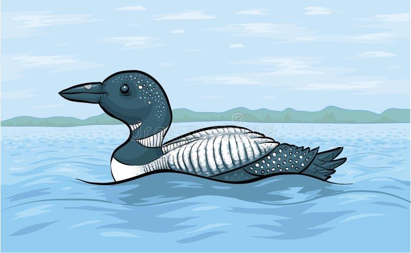 Mergulhão-do-norte do lago ilustração do vetor