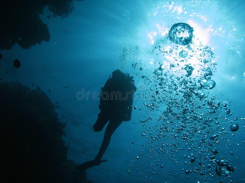 Mergulhador 02 imagem de stock