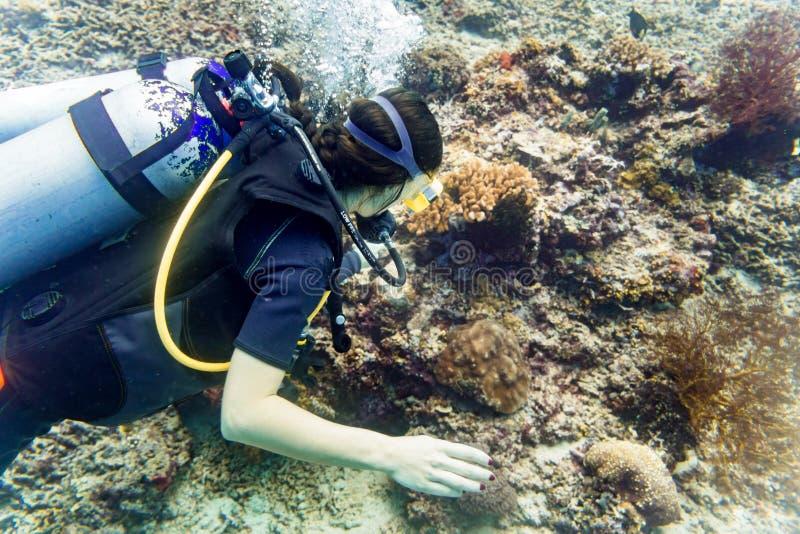 Mergulhador da mulher no mergulho autônomo tropical do recife de corais no ocea tropical fotografia de stock royalty free