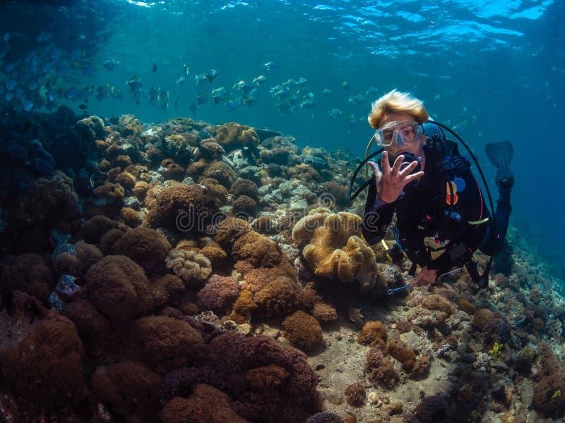 Mergulhador da senhora com a escola dos diamondfish imagem de stock