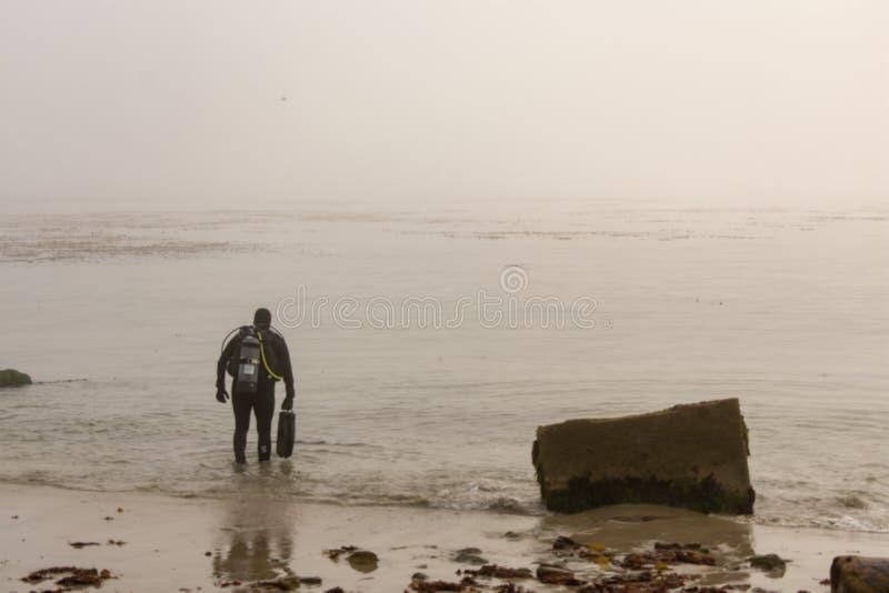 Mergulhador de mergulhador em Monterey fotos de stock royalty free