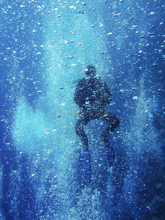 Mergulhador de mergulhador entre milhares de bolhas de ar no Mar Vermelho, Egito, Dahab imagem de stock