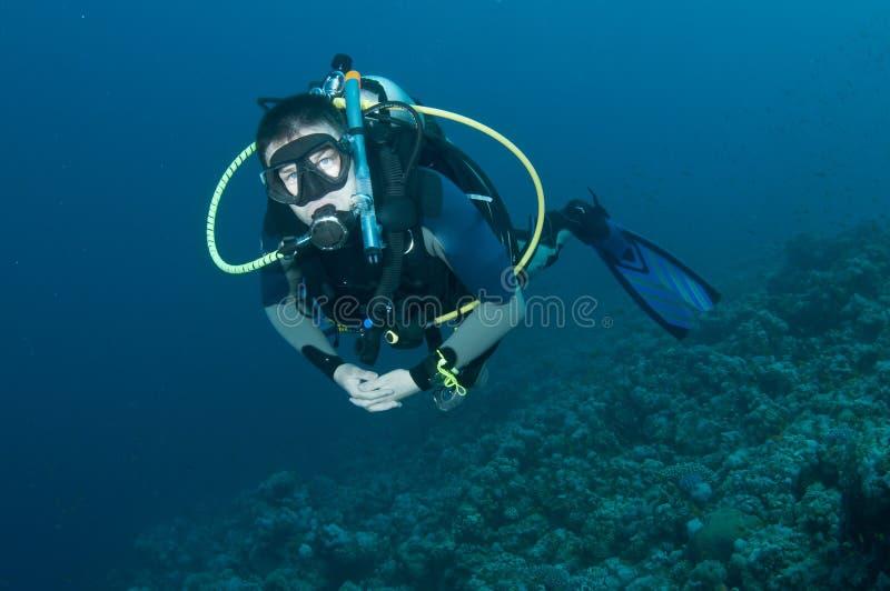 Mergulhador de mergulhador do homem no recife coral fotos de stock