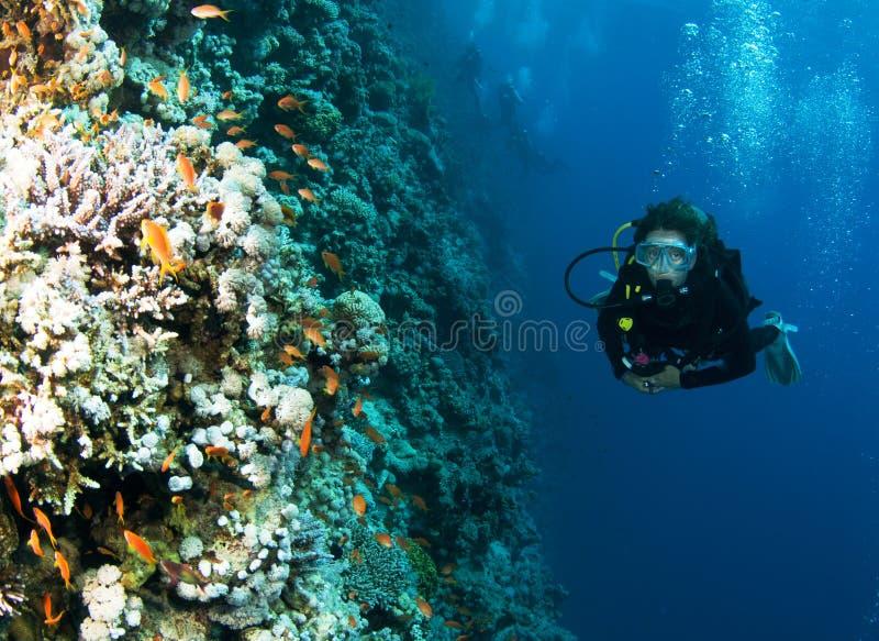 Mergulhador de mergulhador fêmea no recife foral colorido fotos de stock royalty free