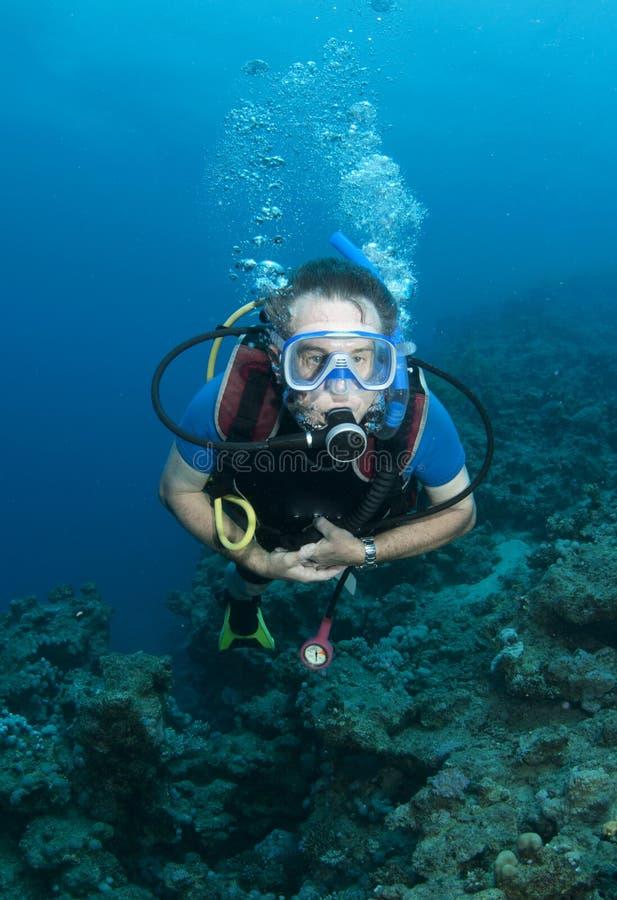 Mergulhador de mergulhador masculino imagens de stock