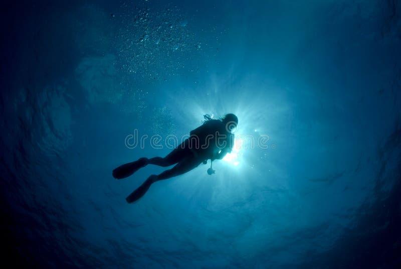 Mergulhador de mergulhador mostrado em silhueta imagem de stock royalty free