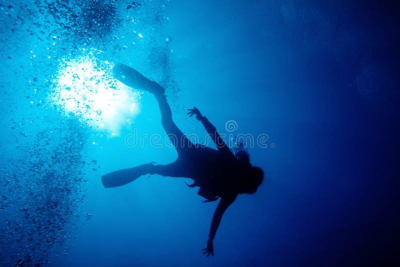 Mergulhador detalhado fotos de stock royalty free