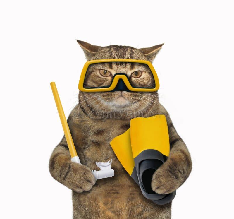 Mergulhador 1 do gato fotografia de stock royalty free
