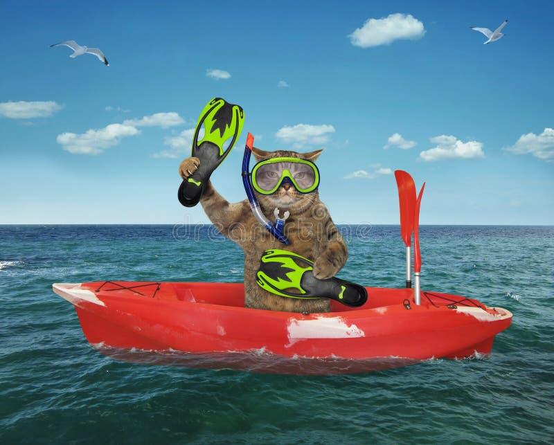Mergulhador do gato que deriva em um barco vermelho fotos de stock royalty free