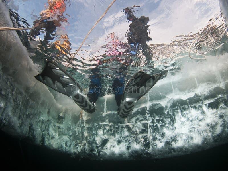 Mergulhador do gelo de Baikal imagem de stock