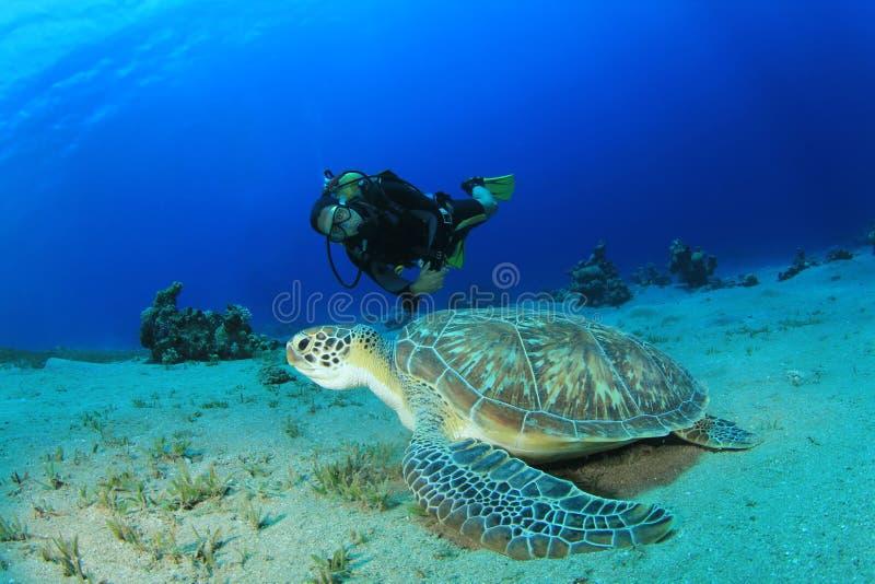 Mergulhador do mergulhador e tartaruga verde foto de stock royalty free