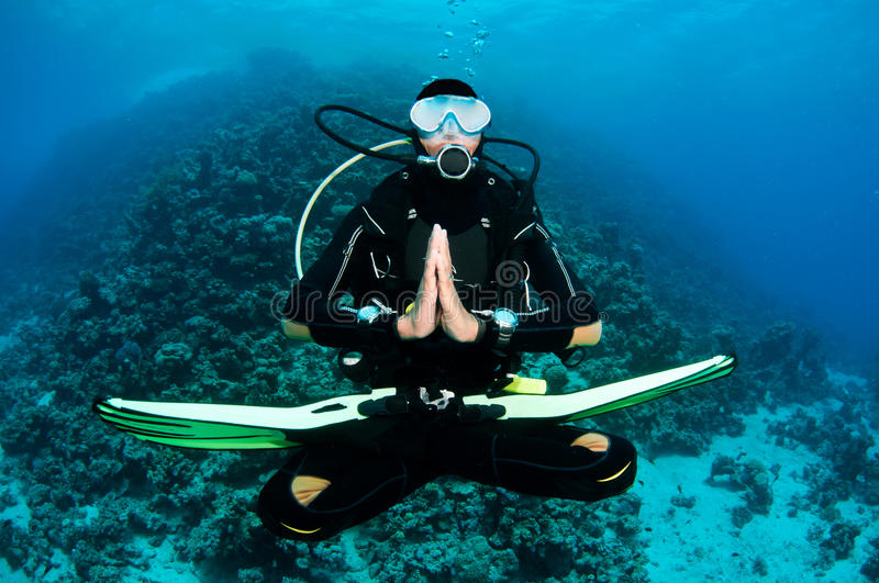 Mergulhador do mergulhador em um mergulho imagens de stock