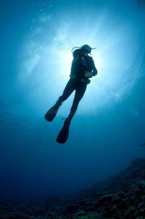 Mergulhador do mergulhador mostrado em silhueta de encontro ao sol imagem de stock
