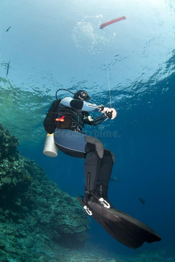 Mergulhador do mergulhador que prende uma bóia de superfície do marcador. foto de stock