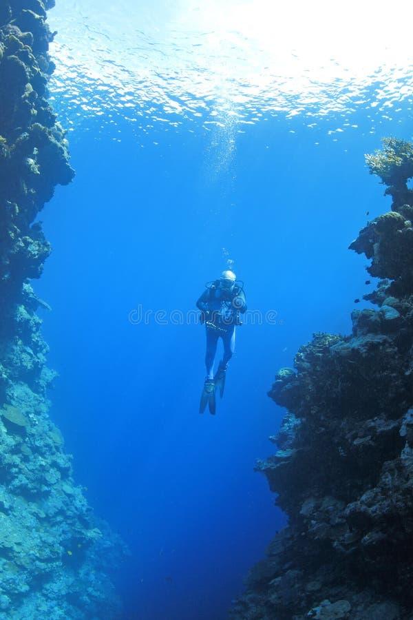 Mergulhador do mergulhador subaquático foto de stock
