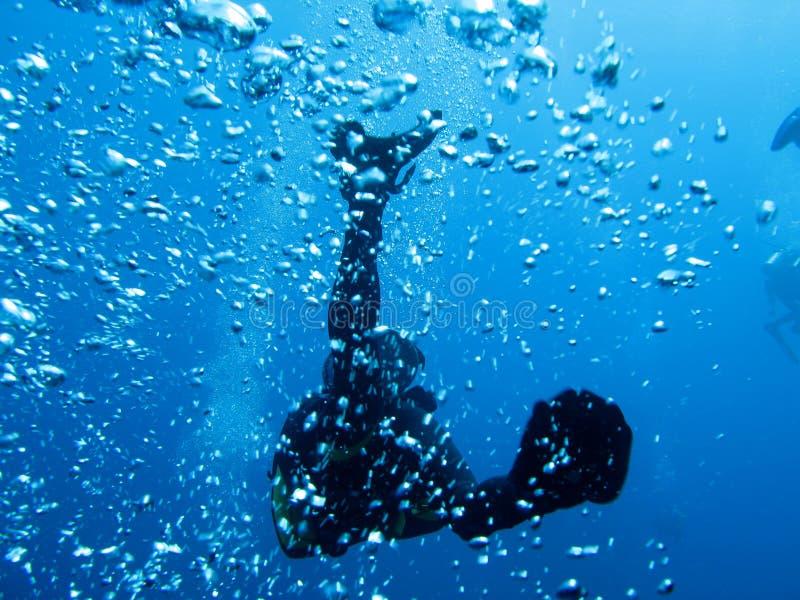 Mergulhador e bolhas fotografia de stock royalty free