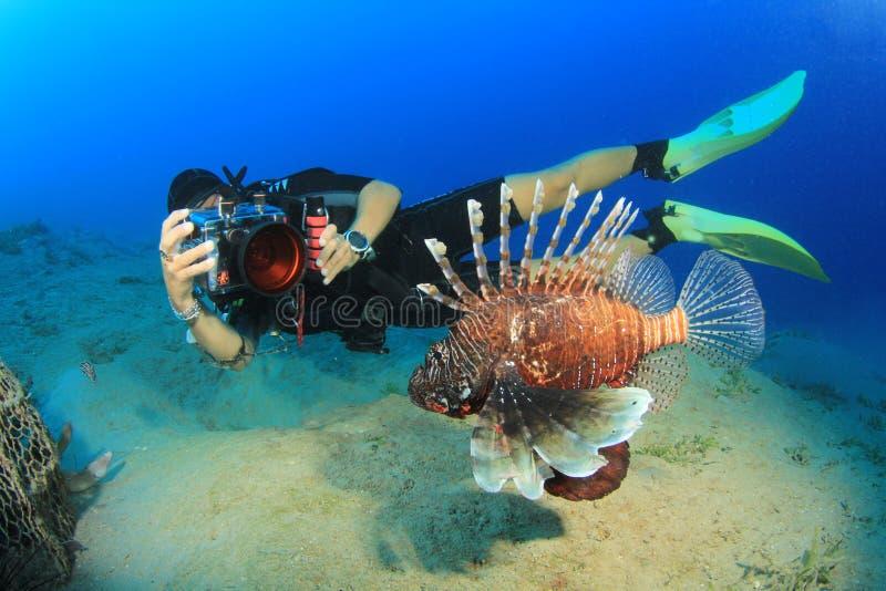Mergulhador e peixes do mergulhador foto de stock