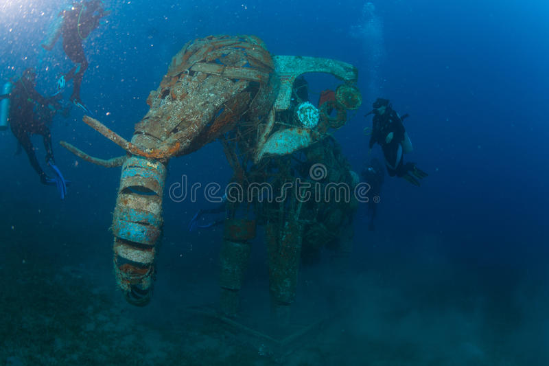 Mergulhador no reaf foto de stock