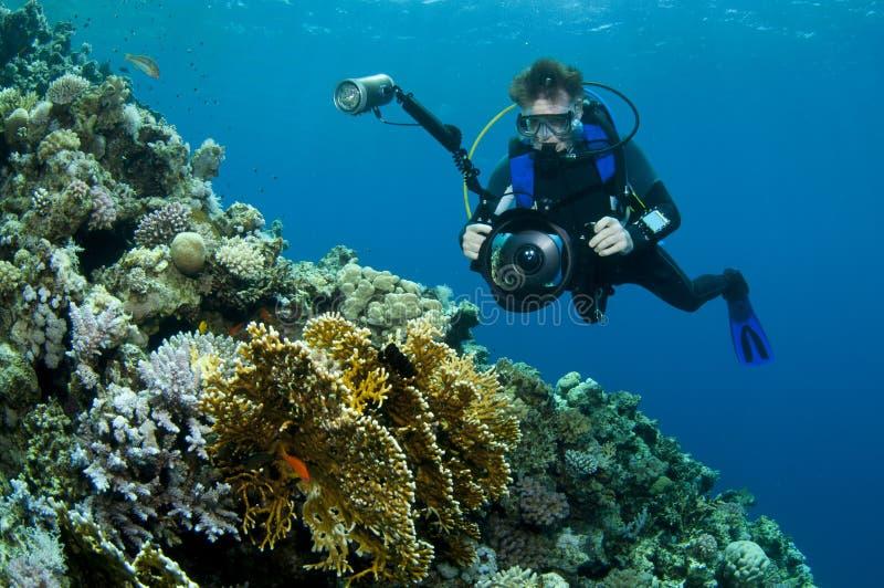 Mergulhador que fotografa o recife coral imagens de stock royalty free