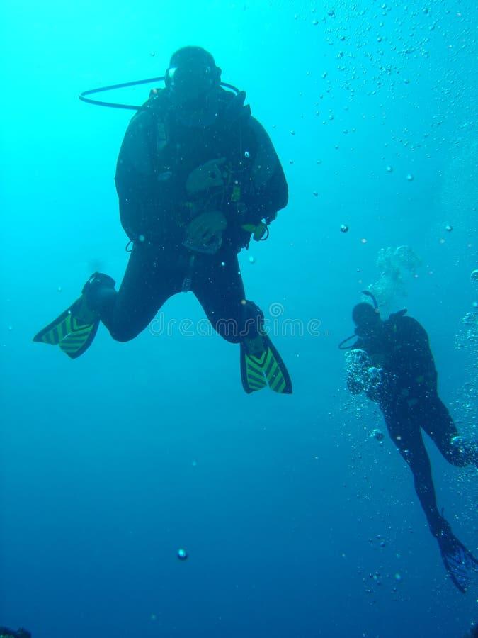Mergulhadores de mergulhador da natação imagem de stock royalty free