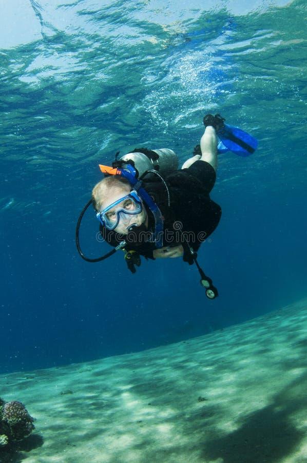 Mergulhadores do mergulhador no recife coral imagens de stock