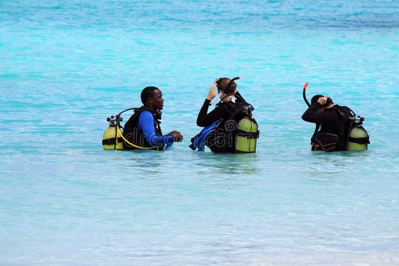 Mergulhadores durante o treinamento fotos de stock royalty free