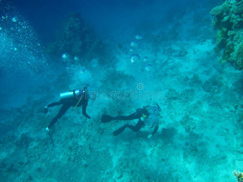 Mergulhadores na parte inferior de mar foto de stock royalty free