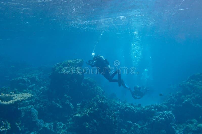 Mergulhadores sobre um recife de corais no mar tropical, subaquático imagens de stock