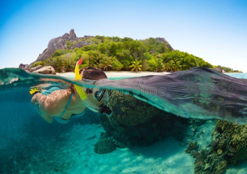 Mergulhando a mulher que explora o sealife bonito do oceano fotos de stock